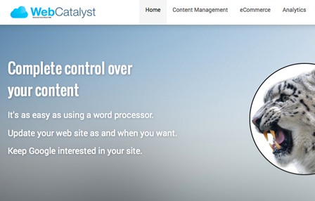 Web Catalyst